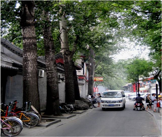 Boom de ciudades asiaticas 5